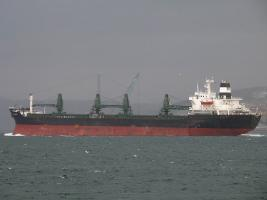 DS PIONEER - IMO 7706328
